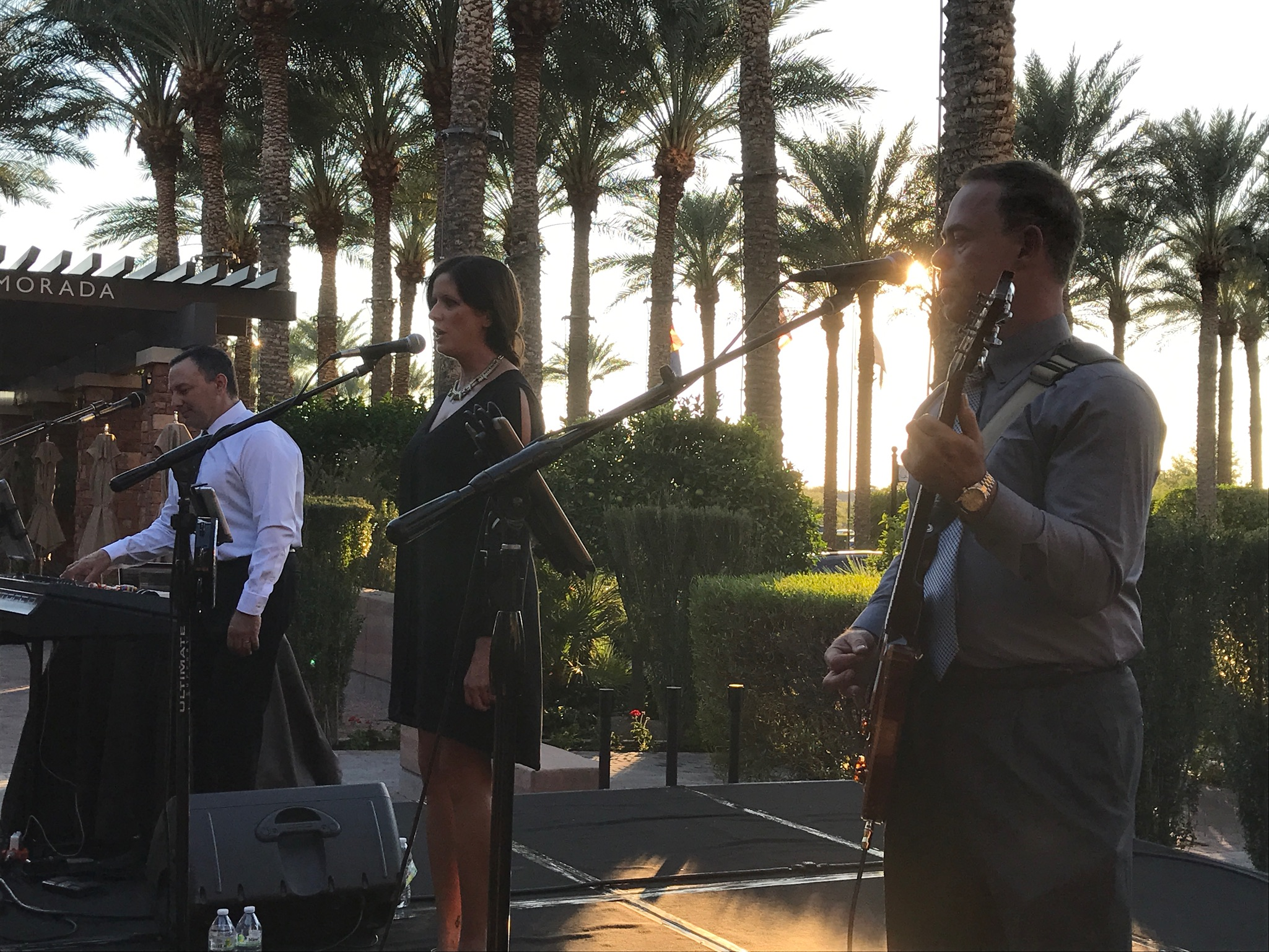 Exit Row Band, Holly Marie, and Sarah McLachlan entertainment for Pulse of the City Soiree